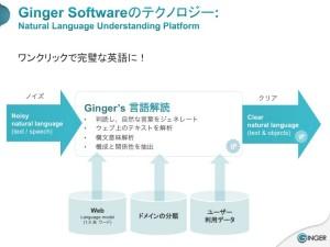Ginger_NLU